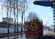 Аренда сортиментовоза в Минске
